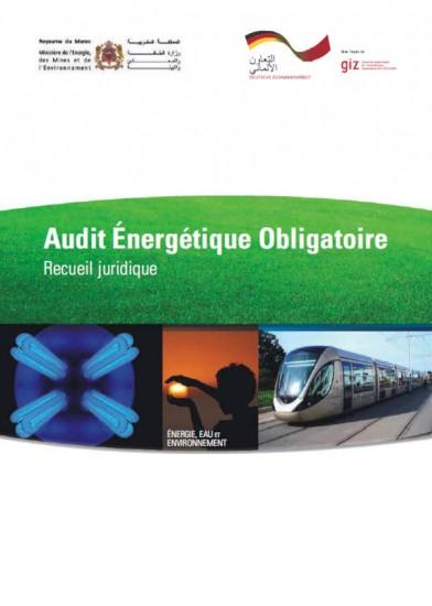 Audit Énergétique Obligatoire recueil juridique