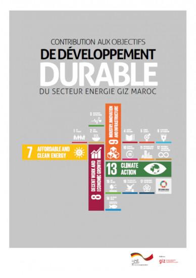 Couverture  PDF de l'analyse Contribution aux objectif de développement durable