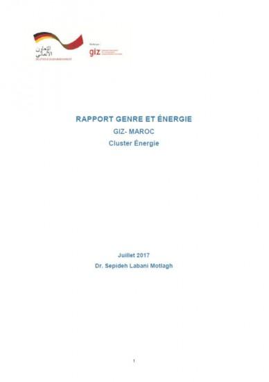 Rapport Genre et Energie GIZ Cluster Energie Maroc